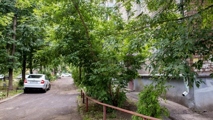 В Ярославле среди бела дня мужчину ударили топором по лицу