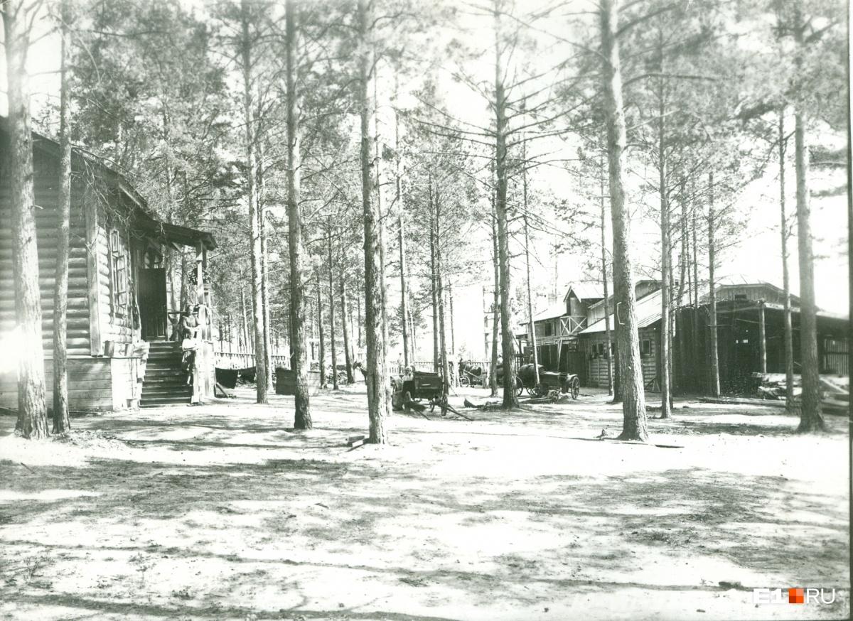 Первые жилые дома на полуострове