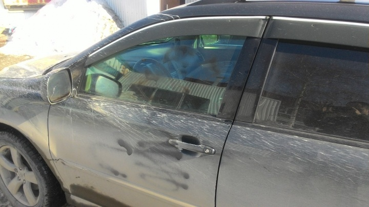 Автовладельцы застали женщину за раскраской машин во дворе дома