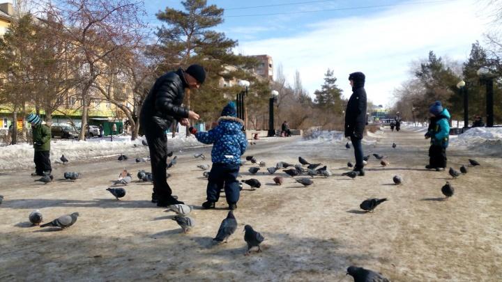 Омские синоптики спрогнозировали потепление и рассказали, какая погода будет в апреле