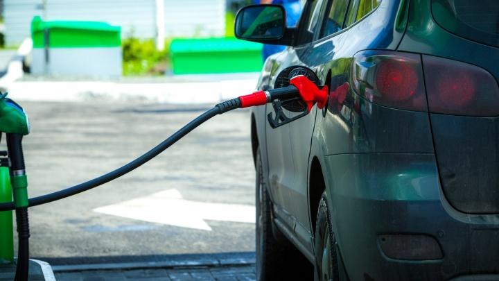 Курганское УФАС заинтересовал рост цен на бензин в регионе