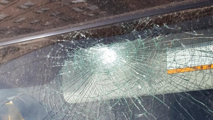 Любители Martini изуродовали машины в «Северном»