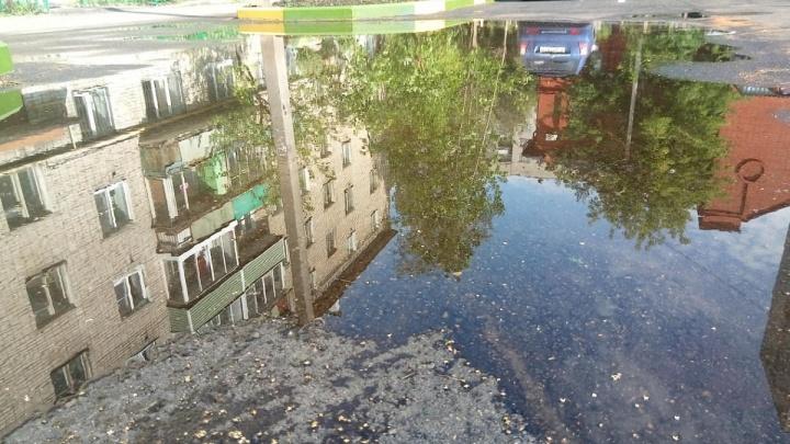 «Я приеду в каждый двор»: за что мэр Ярославля пригрозил чиновникам