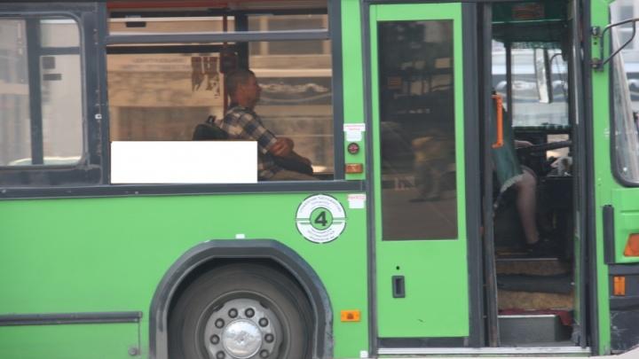 Власти убрали автобус, который ходил до «Матрёшкиного двора»