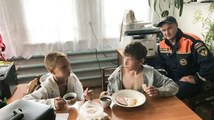 Мальчики живы: подробности поисковой операции в Шатровском районе - в материале 45.ru