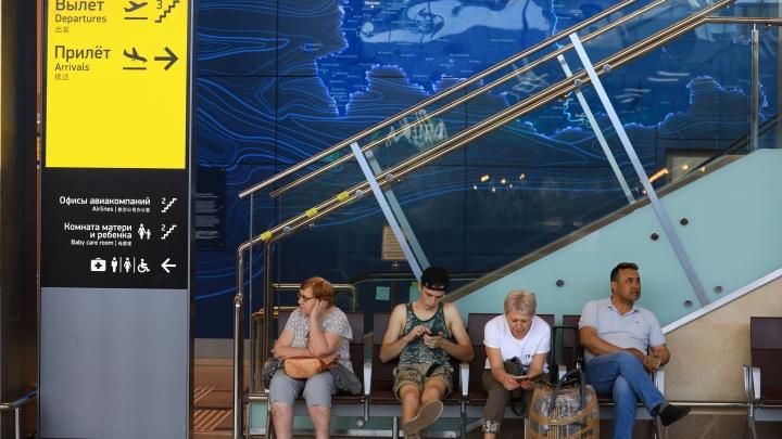 «Можем построить за год»: ж/д ветку до аэропорта Красноярска оценили в 7 миллиардов