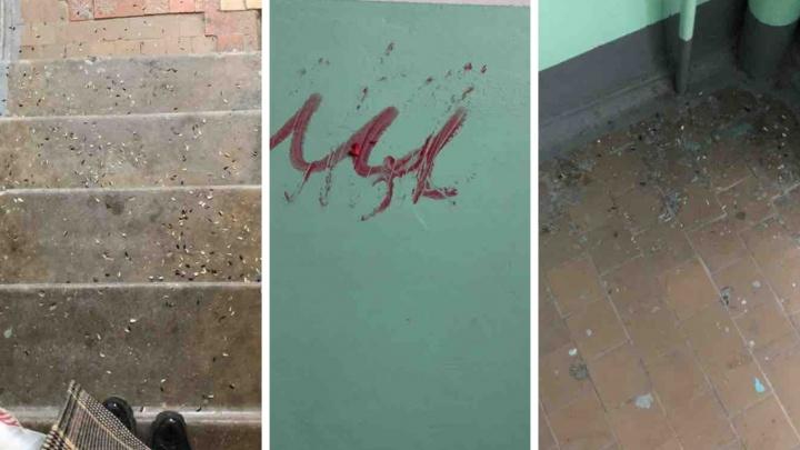 Жильцы тюменской девятиэтажки на Осипенко жалуются на новых соседей. Одну из квартир сдали цыганам