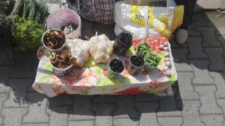 «Почем ягода?»: цены на весь свежий урожай в одной картинке