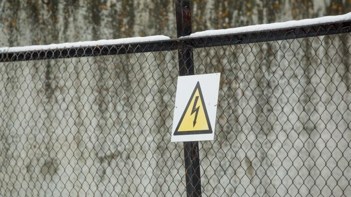 В Ярославской области заключённому в колонии отрезало голову: первые подробности трагедии