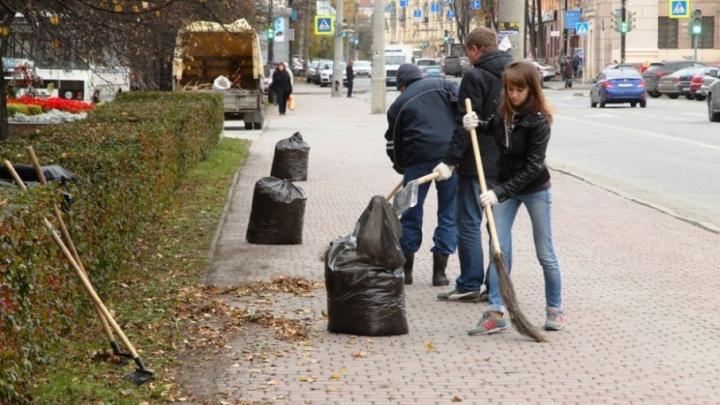 «Мешков с мусором немного»: субботники в Челябинске продлятся до начала лета