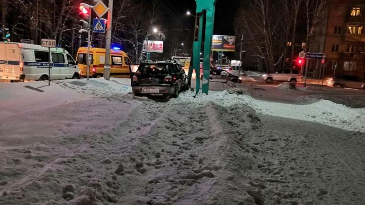 Водитель Mitsubishi вылетел на тротуар, насмерть сбил двух собак и протаранил рекламный щит
