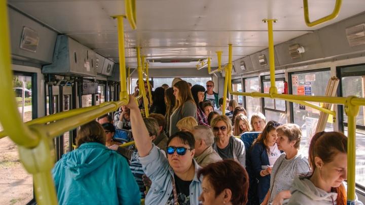 Автобусный маршрут №37 решили не продлевать до рынка «Шапито»