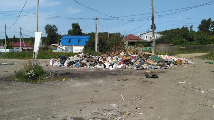280 рублей за кубометр: в «Спецавтобазе» объяснили, как освободятулицы Екатеринбурга от мусора