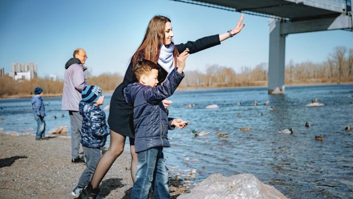 Красноярский фонд получил 2,7 миллиона от Путина для поиска наставников детям-сиротам