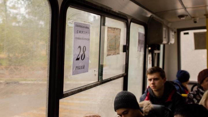 В Ярославле пустят новый автобусный маршрут из центра в спальный район