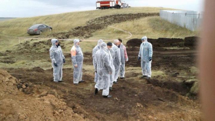 Отсчет карантина по ящуру в Башкирии начался с 16 октября