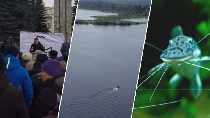 Деньги против политики: какая игра кроется за строительством ЦБК на Рыбинском водохранилище
