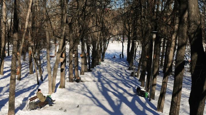 Цена чистого воздуха: возле каких парков в Екатеринбурге самые дешевые квартиры