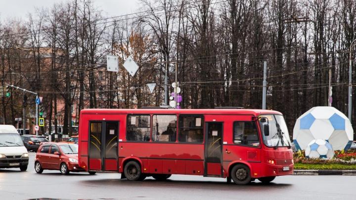 Ярославна требовала 300 тысяч за сломанный в маршрутке нос. Ей заплатили, но меньше