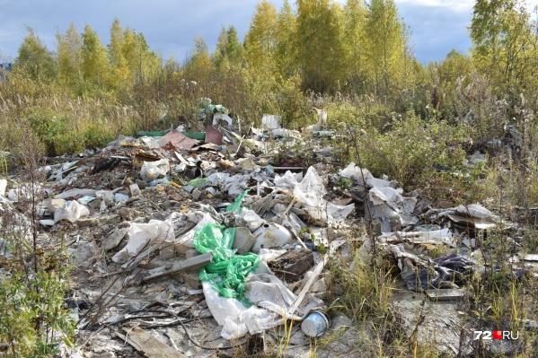 Тюменцы нашли возле озера несколько десятков локальных свалок