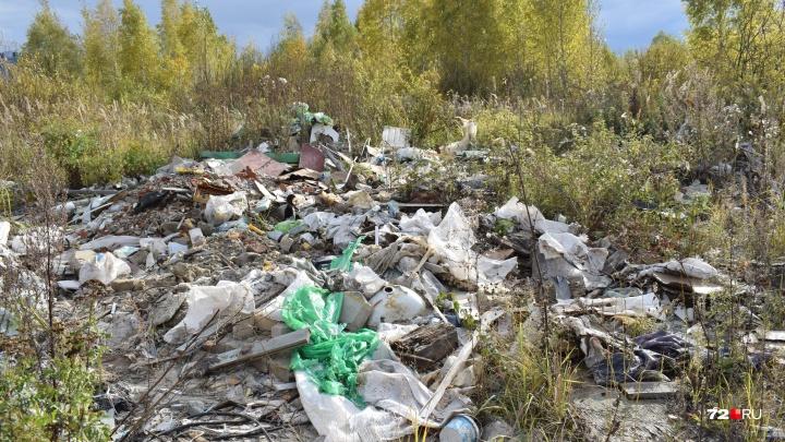 Алебашево чистят, а вокруг залежи мусора: тюменцы нашли на берегу озера свалки и слив жидких отходов