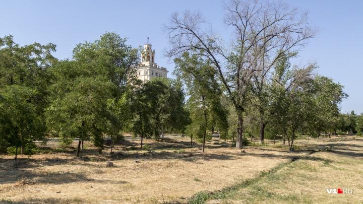 Полмиллиона в наказание: подрядчиков оштрафовали за поливочник у «фонтана-убийцы» в парке Волгограда