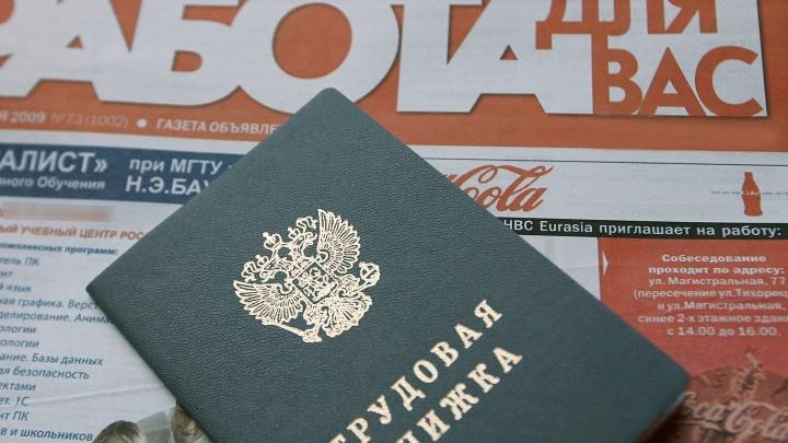 Власти отчитались о падении уровня безработицы в Новосибирской области