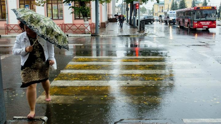 «Если сегодня дождь...»: по народным приметам определяем, какой будет вторая половина лета