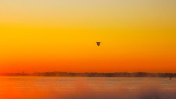 Фотограф показал дивный багряный рассвет над замерзающей Волгой