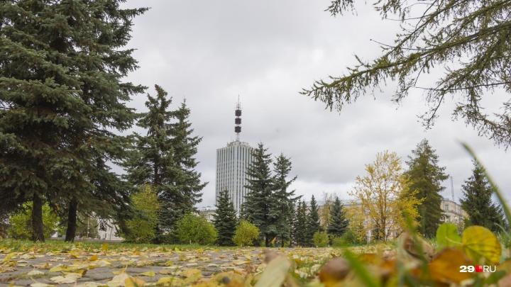 На пару градусов теплее, чем обычно: каким будет начало октября в Архангельской области