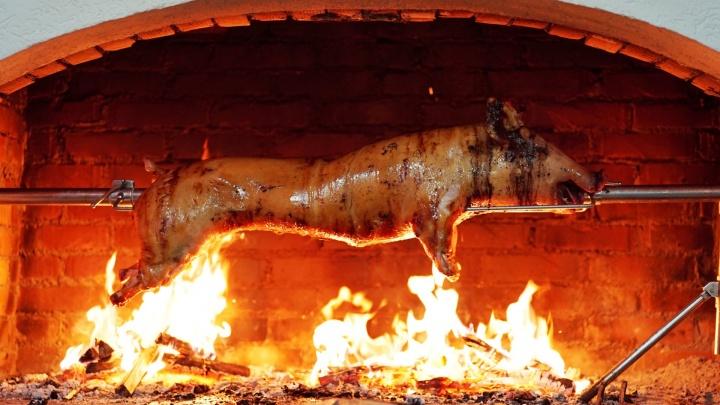 Венгерская свинья станет специальным «гостем» фестиваля «РыбаДичь»