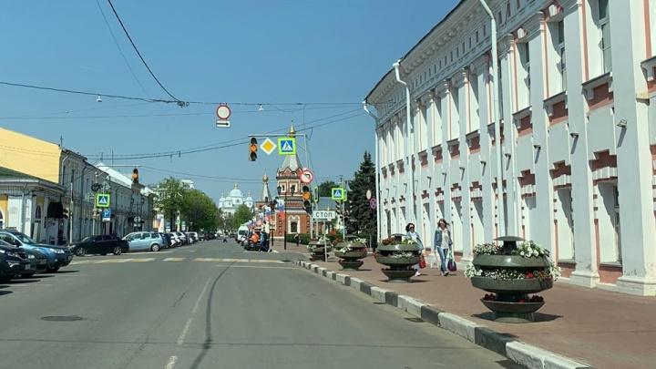 «Какая же адовая безвкусица»: ярославцы раскритиковали цветники у мэрии