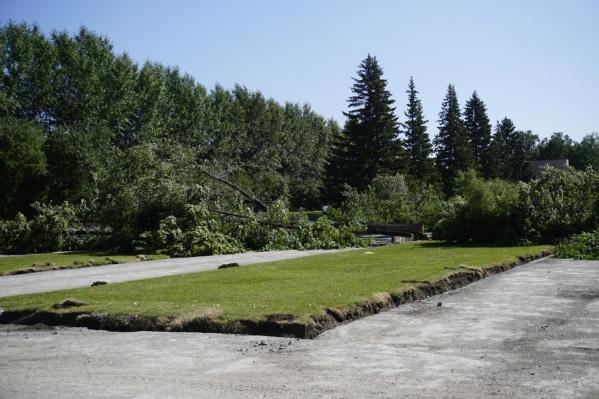 Реконструкция сквера началась в июне