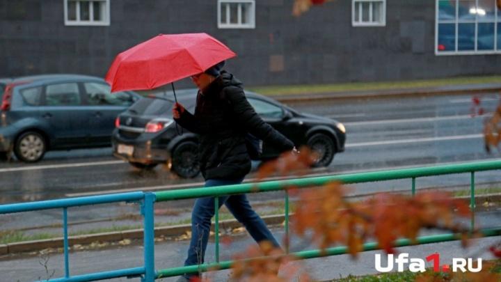В Башкирии прогнозируют порывистый ветер и дожди