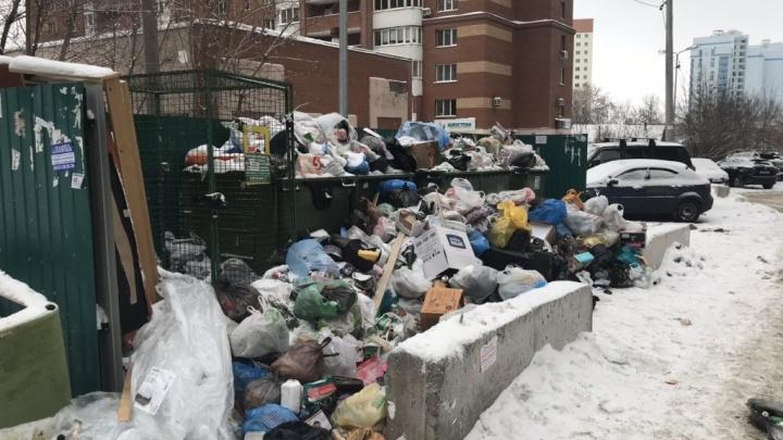 Тариф на мусор: всё, что нужно знать о новой системе обращения с отходами в Самарской области