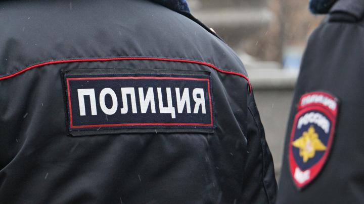В Перми 15-летнего мальчика покусал питбуль: родители ищут очевидцев нападения