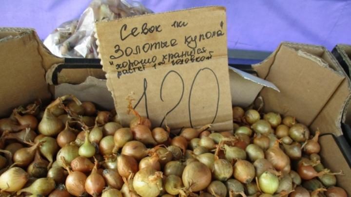 На Некрасовском рынке в Кургане продавали «Золотые купола» без документов