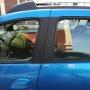 Ярославна оставила малыша в машине в 30-градусную жару