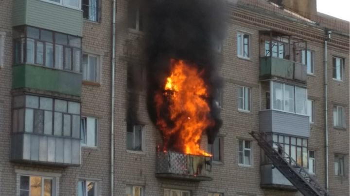 Пламя высотой несколько метров: в Рыбинске утром сгорела квартира, пострадали и соседние