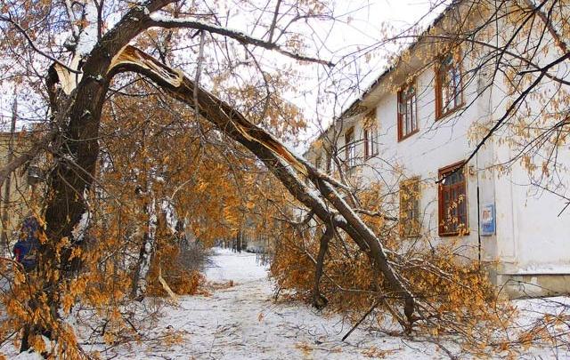 Праздничные выходные в Челябинской области будут ветреными и холодными