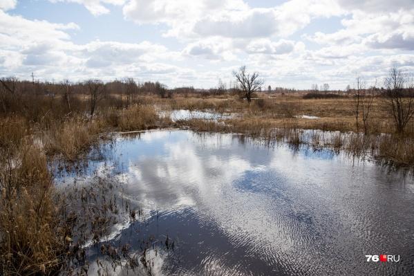 Пруд, в котором нашли тело женщины, не предназначен для купания