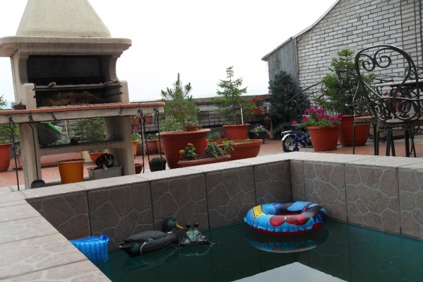 Собственники разбили зону отдыха с бассейном и мангалом
