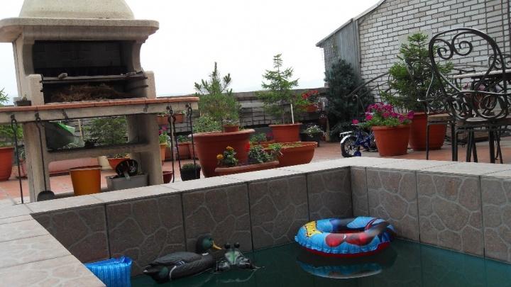 В центре Красноярска выставили на продажу квартиру с бассейном на крыше