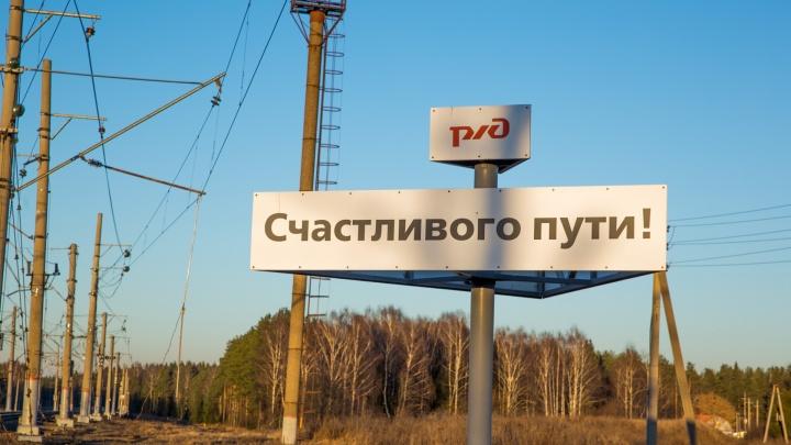 По Ярославлю пустят наземное метро: сколько будет стоить и как поедет