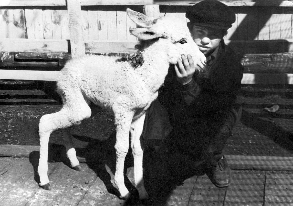 Юннат Леня Иглин, фото начала шестидесятых