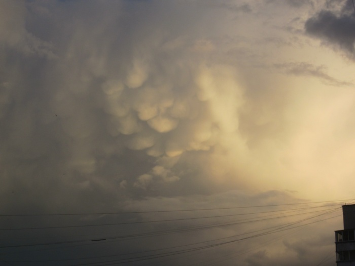Над Новосибирском сняли вымеобразные облака (фото)
