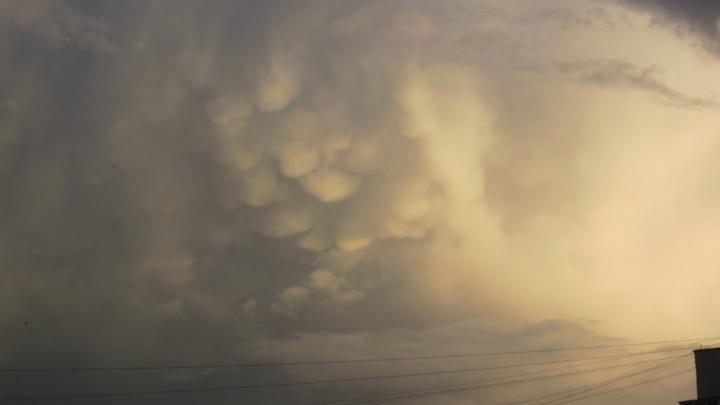 Над Новосибирском сняли вымеобразные облака