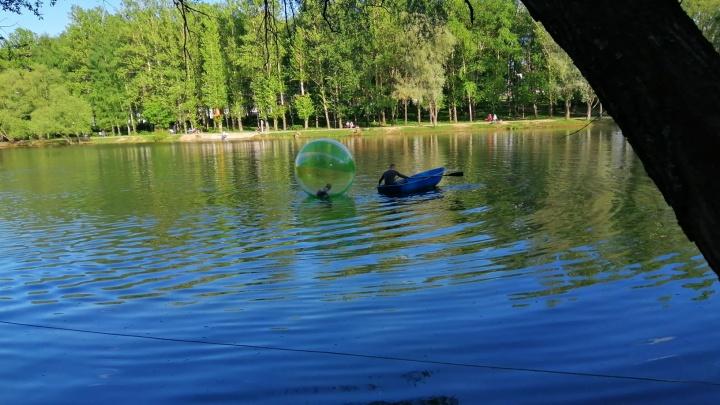 В Ярославле двухлетнего ребёнка унесло на середину пруда в надувном шаре