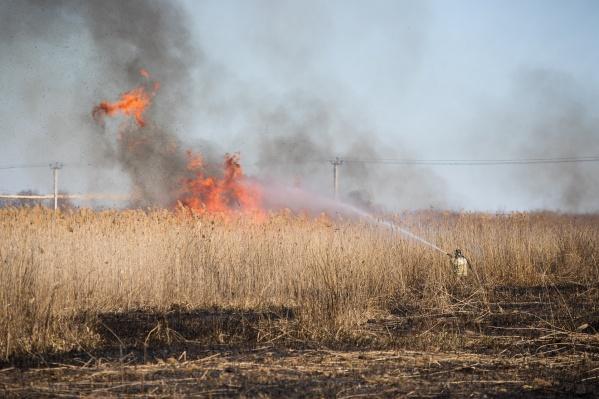 МЧС сообщили о пожароопасности четвертого и пятого классов