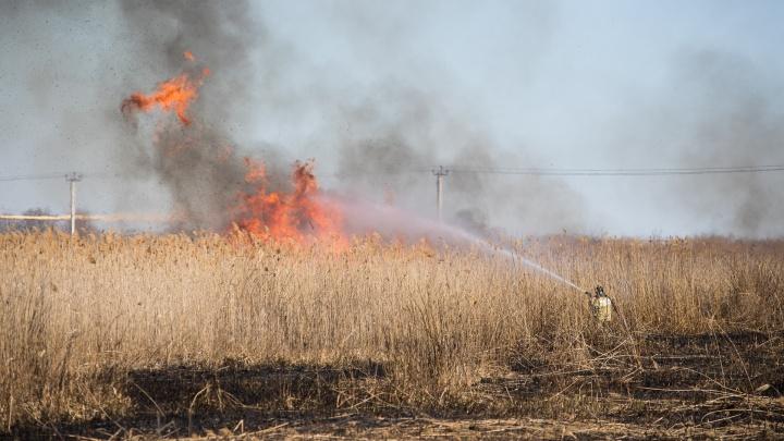 МЧС: Ростовской области угрожают сильные пожары